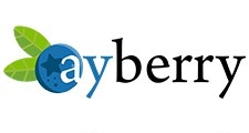 AyBerryLogo.jpg