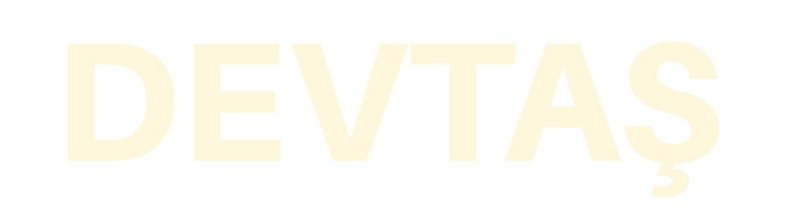 DevTas-Back.jpg